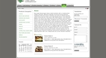 Rounded Gray Green Design Theme